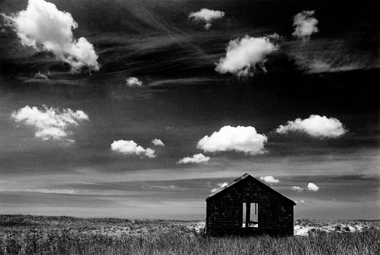 Quansoo 1981 —Alison Shaw